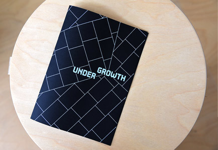 Undergrowth Zine produced with FCBStudios for the Oslo Triennale